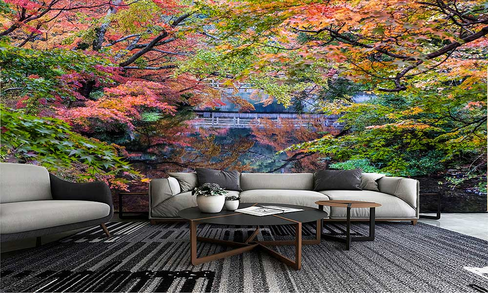 autumn-landscape-japan-maple-tree-sp8lp8yu2gx